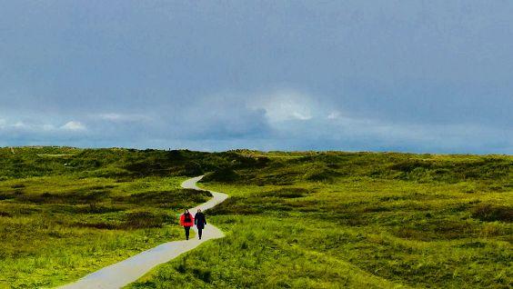 Bezoek de prachtige natuur van Texel